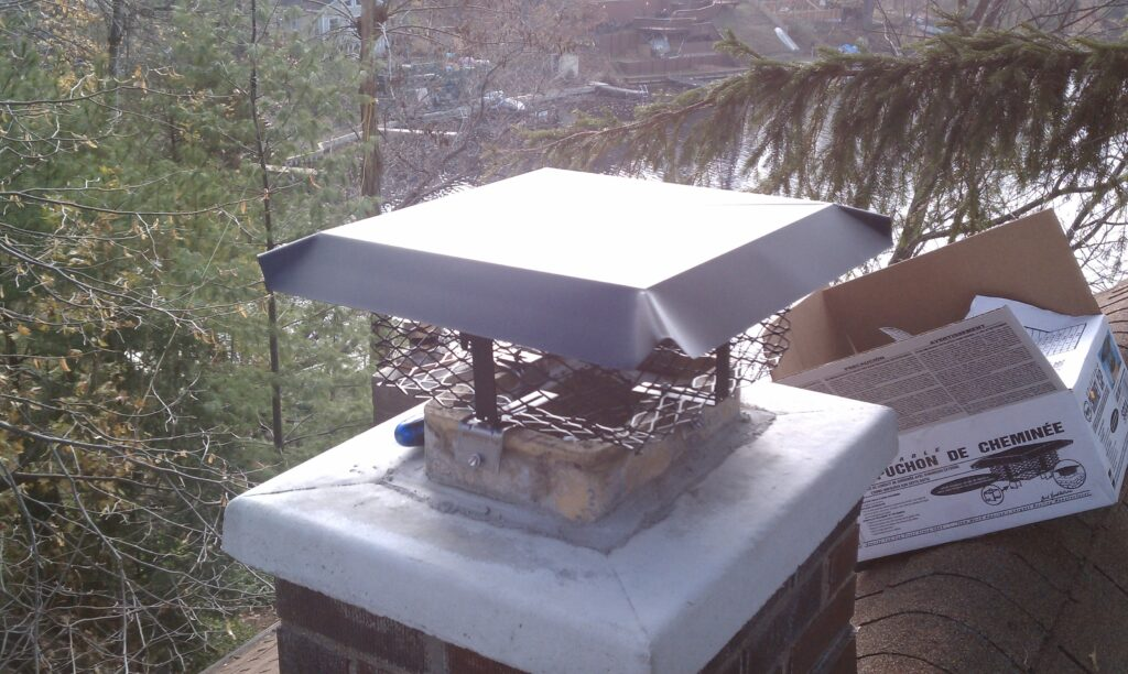 Chimney caps for wildlife prevention
